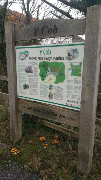 y-cob-glaslyn-marshes